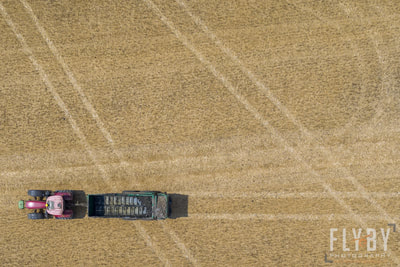 top down drone aerial image of a tractor trailer speading during harvest, wheat crop top down image with tramlines and tractor tracks. Thirds